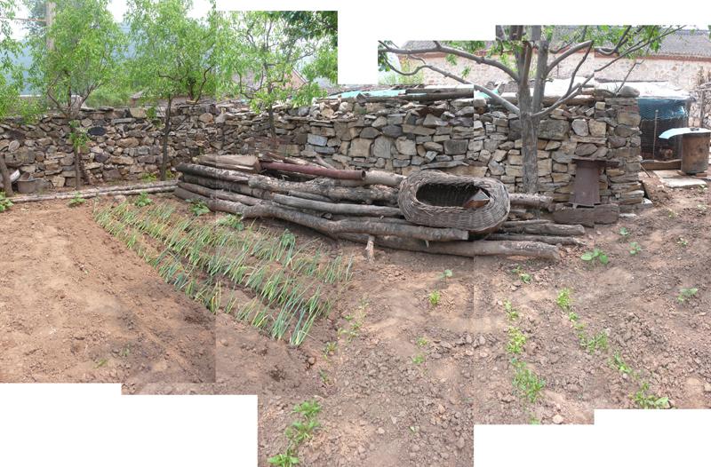 garden BASEhouse 50